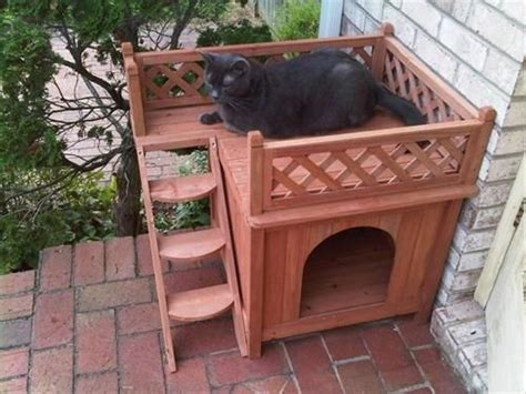 wooden pallet cat house pallets designs outdoor cat