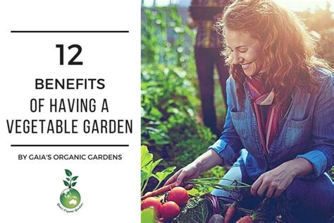 12 Benefits Of Having A Vegetable Garden Gaias Organic Benefits Of Vegetable Gardening