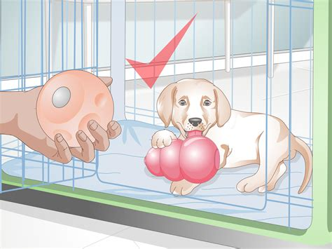 how to get a puppy to sleep at how to get your puppy to sleep in its own bed 13 steps