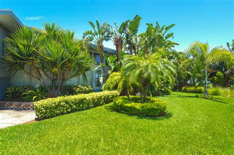 Palm Garden Of Clearwater by Ta Residential Landscaper Clearwater And St