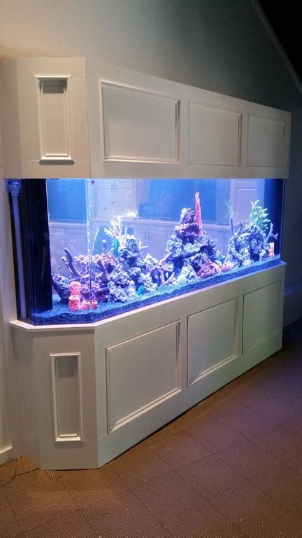 aquarium design group llc aquariums photo gallery aqua blue aquarium solutions