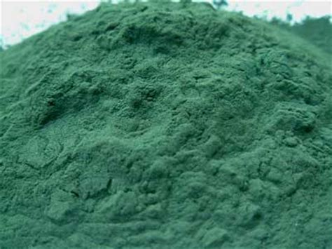 Blue Algy Detox Metals by How To Detox The Liver Using Blue Green Algae