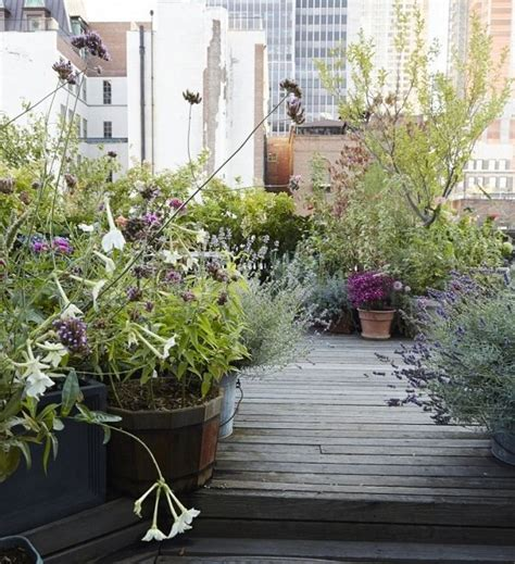 rooftop plants 5 roof garden designs worth looking at balcony garden web