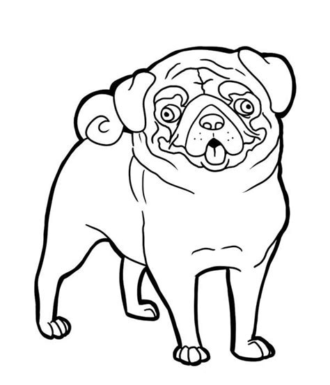 pug pug funny face coloring page art pinterest