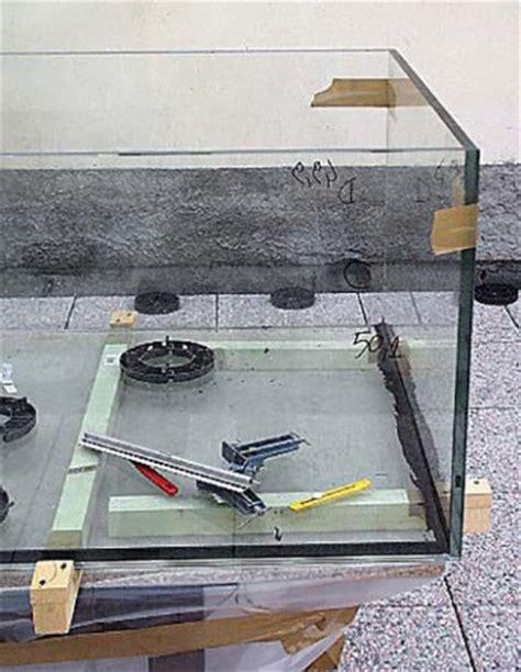 costruire vasca acquario articoli zanclus it