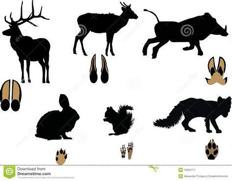 Kemben Hert 动物查出空白其的跟踪 库存例证 图片 包括有 跟踪 敌意 土狼 投反对票 背包徒步旅行者 本质