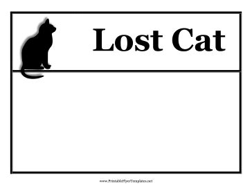 Lost Cat Flyer Free Lost Cat Flyer Template