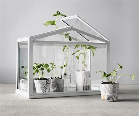 socker greenhouse 17 best images about ikea socker on green