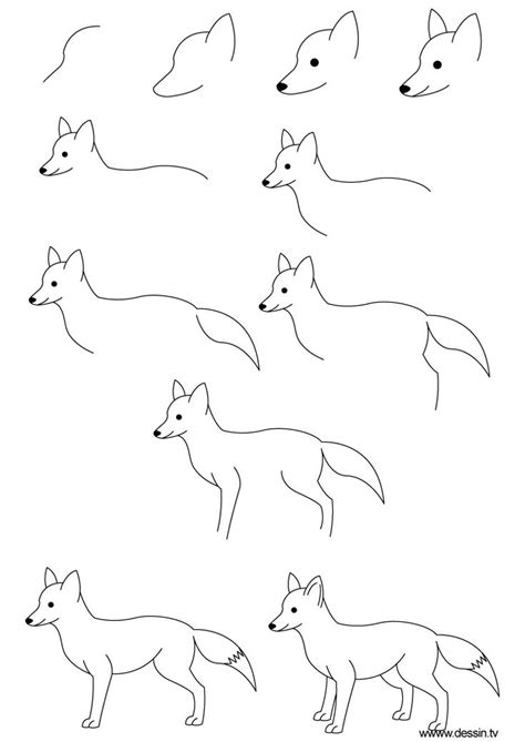 how to draw basic doodle best 25 simple animal drawings ideas on