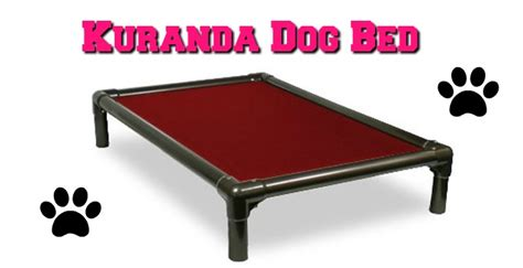 kuranda bed kuranda beds 28 images kuranda s aluminum chew proof