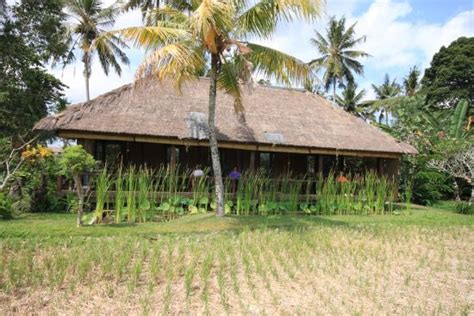 Ananda Cottages Bali by Ananda Cottages Ubud Indonesia Complejo Tur 237 Stico