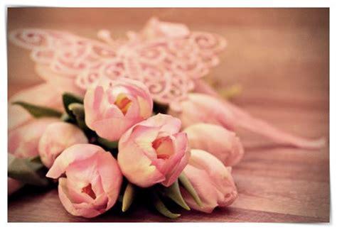 imagenes rosas en el mar imagenes de rosas en el mar dibujo imagenes