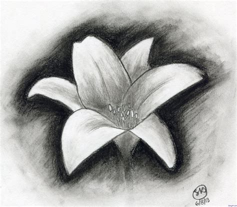 How To Draw A Flower With Charcoal