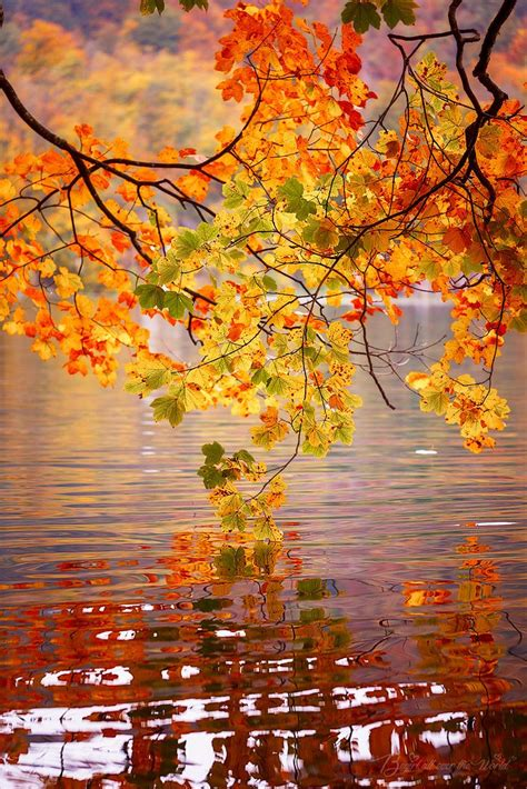 Get Ready For Autumn Fall A Gorgeous View Without The Hike Ready For Fall