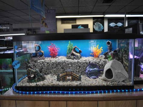 home accessories cool aquarium decorations how to make a