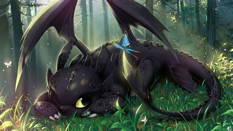 how to housebreak a how to your wallpaper toothless 25 desktop background hivewallpaper