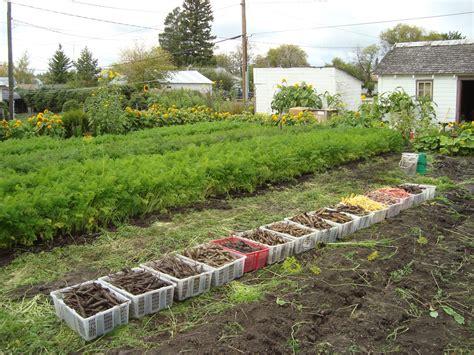backyard farming on an acre 100 backyard farm welcome to the backyard farm
