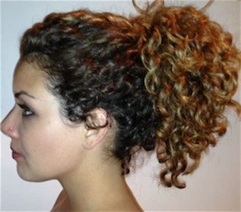 curly hairstyles in a ponytail curly hairstyles for long hair style samba