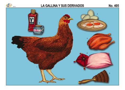 imagenes de animales y sus derivados 95 ideas dibujo de la gallina y sus derivados on