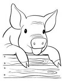pig coloring pages free printable pig coloring pages for