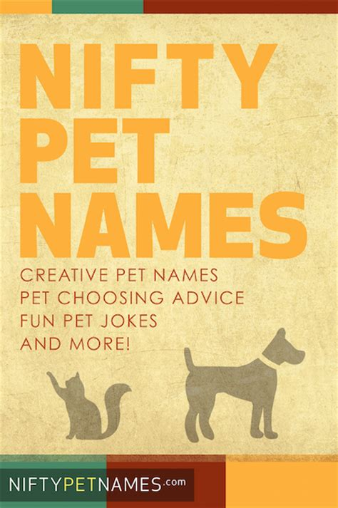 creative names for dogs naming your pet archives creative pet names animal pet name ideas