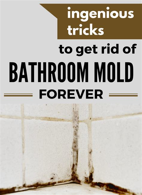 get rid of mold in bathroom ingenious tricks to get rid of bathroom mold forever