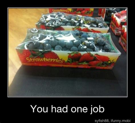 libro you had one job 12 best images about you only had one job photos on funny laughing and walmart