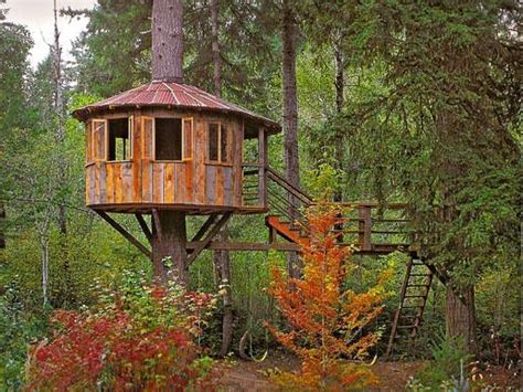 tree houses on tree houses