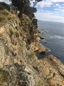 17 year old hairstylist cliff 17 year old tasmanian girl dies in late night cliff fall