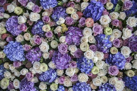 Decor Flowers luxury wedding flower wall ideas for your big day