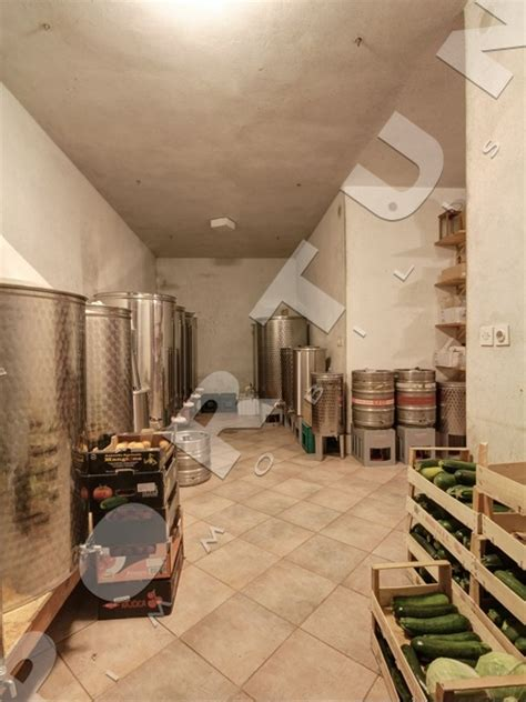 Appartamenti Rovigno Vicino Al Mare by Vendesi Agriturismo Vicino Al Mare A Rovigno