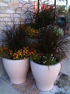 fall container planting up nybro peterson