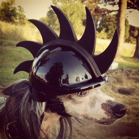 puppy helmet helmet with mohawk