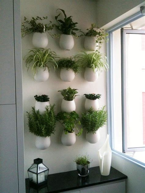 kitchen herb a wall of herb pots for the kitchen househomeheart