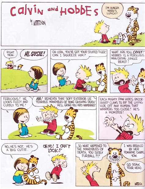the essential calvin and hobbes a calvin and hobbes treasury the essential calvin and hobbes calvin and hobbs