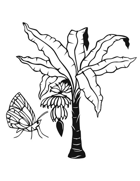 jungle tree coloring page cute jungle tree coloring pages