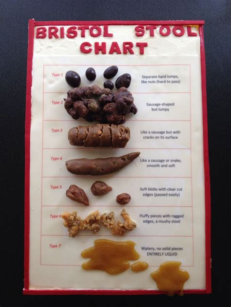 Bristol Stool Chart Cake by A Bristol Stool Chart Cake There Are Plans Afoot To Make