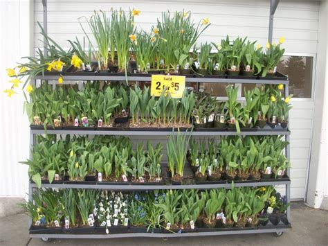 Fred Meyer Gift Card Selection - beautify your garden for less at fred meyer 25 gift card giveaway
