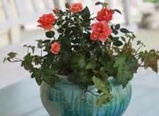 outdoor planters garden pots   home depot