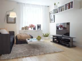 black living room rugs white living room black sofa amazing furry rug olpos design