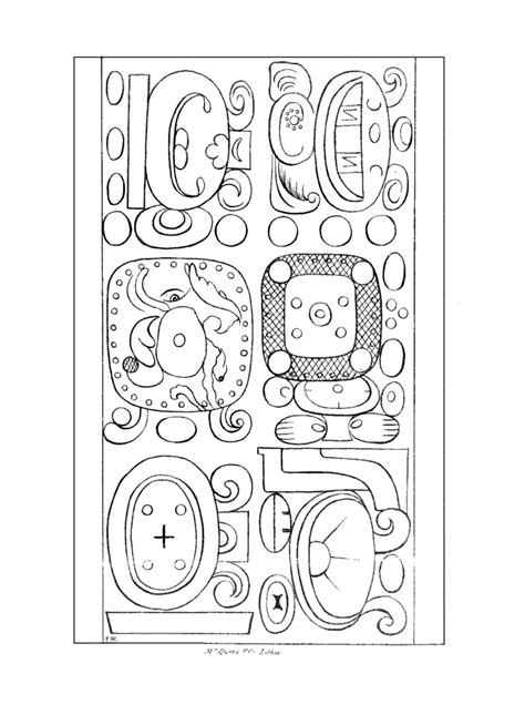 coloring page of redwood tree free coloring pages of a redwood tree