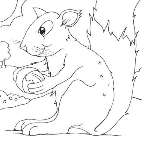 coloring book javascript colouring squirrel