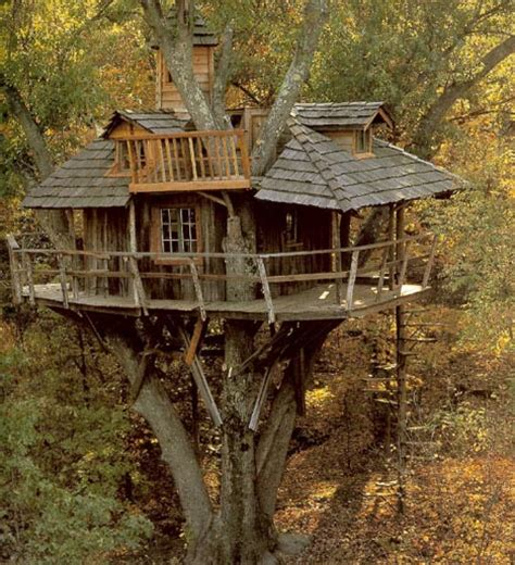 amazing ecoloft a house in the trees enpundit amazing tree houses plans pictures designs building