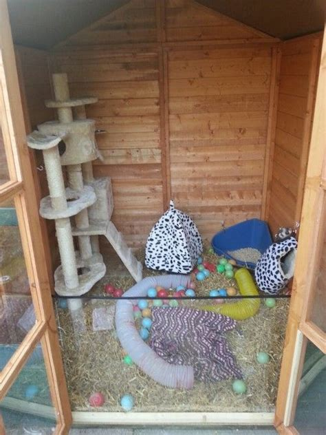 Rabbit Shed Ideas by 1000 Ideas About Rabbit Shed On Rabbit Ideas Bunny Hutch And Pet Rabbit