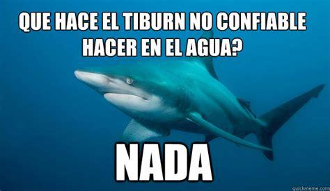Sad Shark Meme - 191 que hace el tibur 243 n no confiable hacer en el agua nada