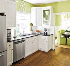 Painting kitchen cabinet with white color