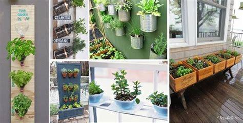 creative diy herb garden ideas