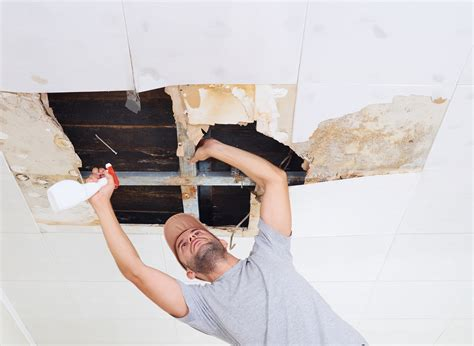 best way to clean mold off bathroom ceiling clean mold off ceiling 28 images mould clean mould stop mould growing mold