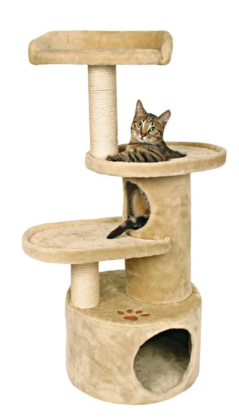 indoor cat house plans feral cat house plans images feral cat house plans free