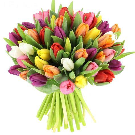 The S Bouquet by Livraison Bouquet De Tulipes Multicolores Bouquet De